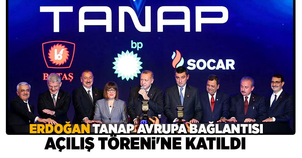Cumhurbaşkanı Erdoğan, TANAP Avrupa Bağlantısı Açılış Töreni'ne katıldı