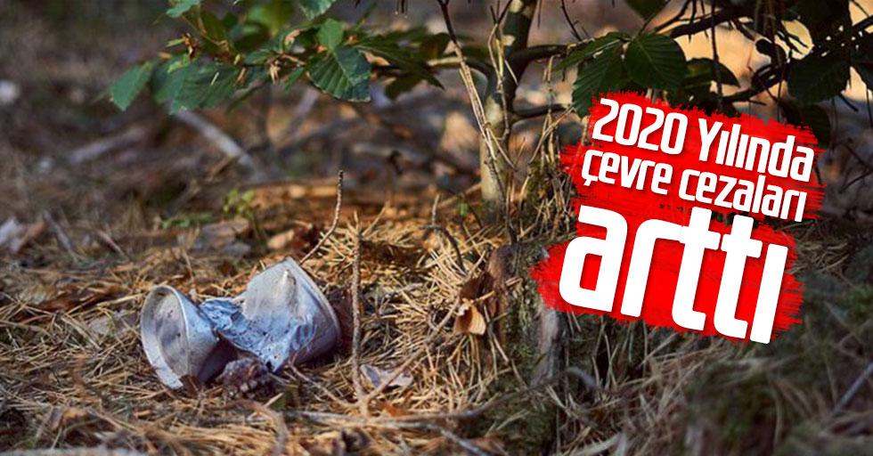2020 Yılında Çevre Cezaları Arttı