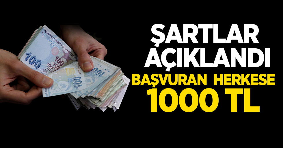 e-Devlet üzerinden başvuru ile 1000 lira ödeme alınabilecek! Sosyal yardım şartları neler?