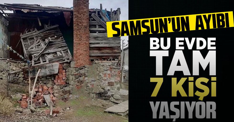 Samsun'un ayıbı: Bu evde 5'i çocuk 7 kişi yaşıyor!