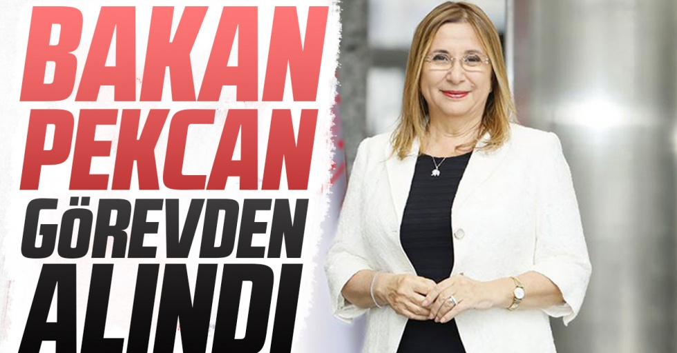 Ruhsar Pekcan görevinden alındı, yeni bakan Mehmet Muş oldu