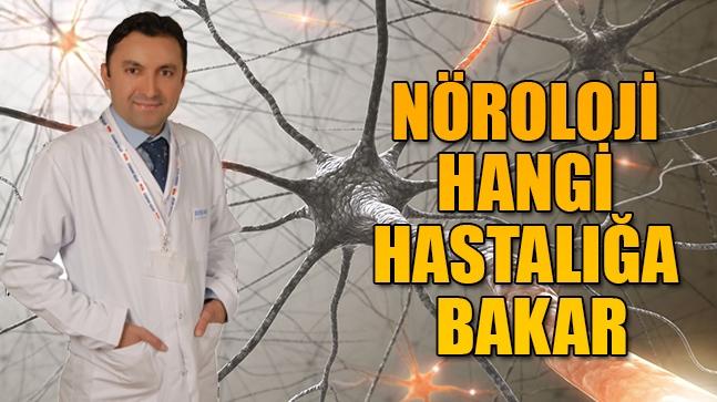 Nöroloji Hangi Hastalığa Bakar