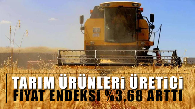 Tarımın Ücretsiz Çalışanı Kadınlar