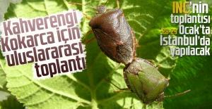 Kahverengi Kokarca için uluslararası toplantı