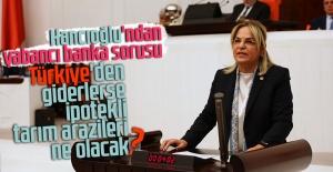 Hancıoğlu'ndan yabancı banka sorusu