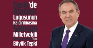 Saski'de Atatürk...