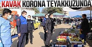 Kavak Korona Teyakkuzunda