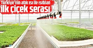 Türkiye'nin atık ısı ile ısıtılan ilk çiçek serası